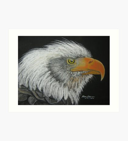 Steve's Bald Eagle Art Print