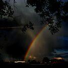 Where the Rainbow Ends by Brenda Dahl