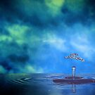 Liquid Shroom by Tim Wright