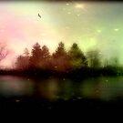 Magic falls upon the night... © by Dawn Becker