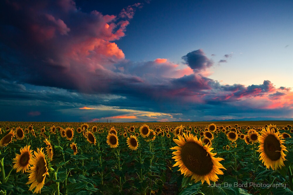 Skies Of A Summer Sunset by John  De Bord Photography
