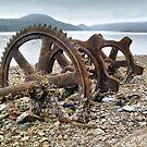 Abandoned wheel on the beach by Istvan Hernadi