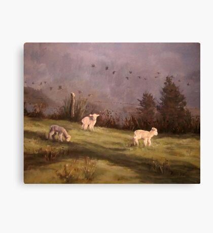 Winter Morning Canvas Print