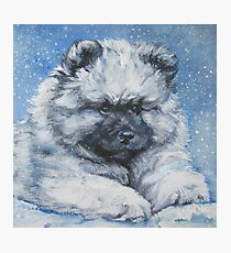 Keeshond Fine Art Painting Photographic Print