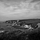 View from Toby's Point on the SW Coastal Path by moor2sea