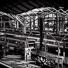 Platform 9 and 10 by Norman Repacholi