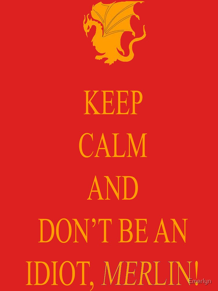 Don't be an Idiot, Merlin tee by Emerlyn