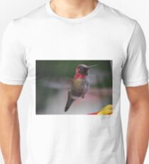 HUMMINGBIRD ANNA'S IN FLIGHT TO FEEDER Unisex T-Shirt