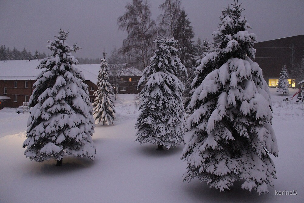Winter in the Ore Mountains by karina5