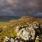 Upper Wharfedale by Andrew Leighton