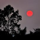 Smoky Sun by amko