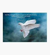 The Peace of God which surpasses all understanding . . . Photographic Print