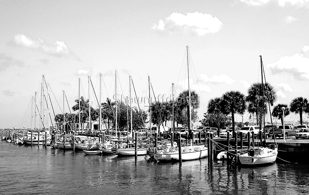Fort Pierce Marina  (Black and White) by Shawnuffdigital