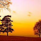 Surrey Sundown by andonsea