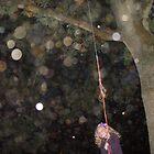 orbs in savernake forest  by scott hanham