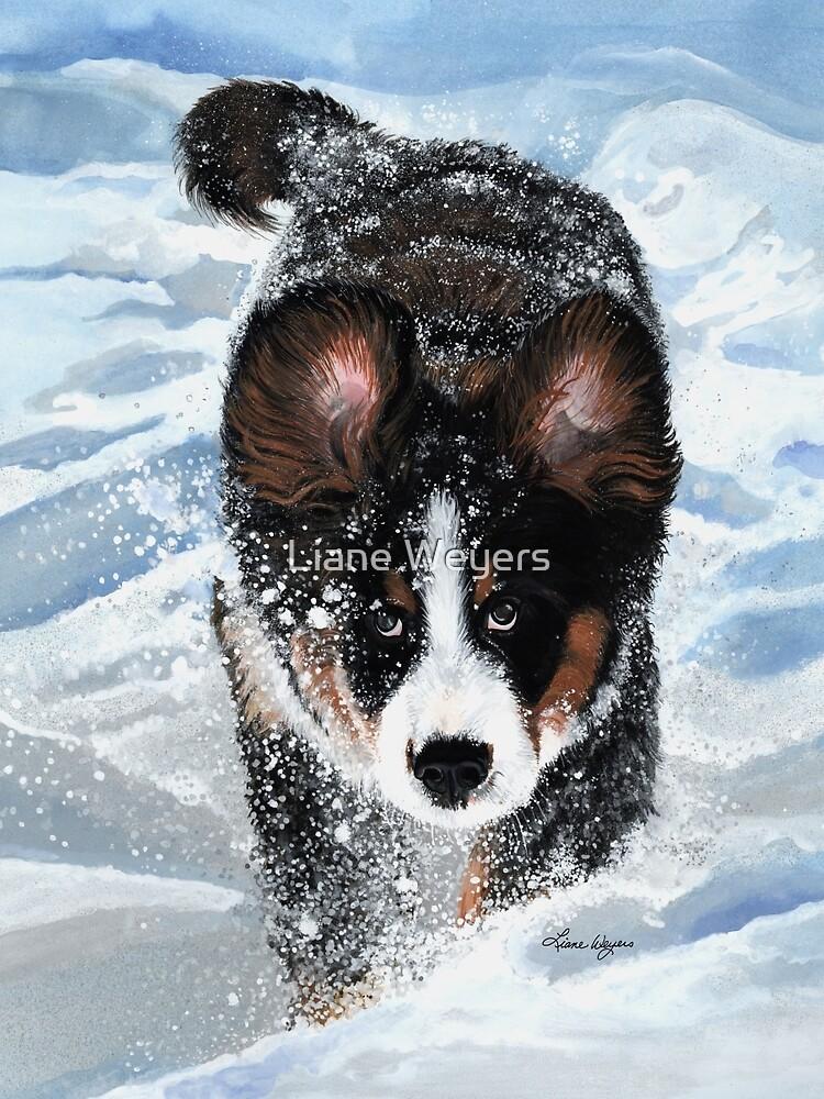 Snow Plow by lianeweyers