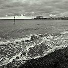 Shoreline Melancholy by Patrick Metzdorf