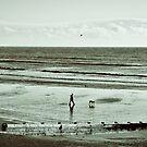 Dog Walk by Patrick Metzdorf