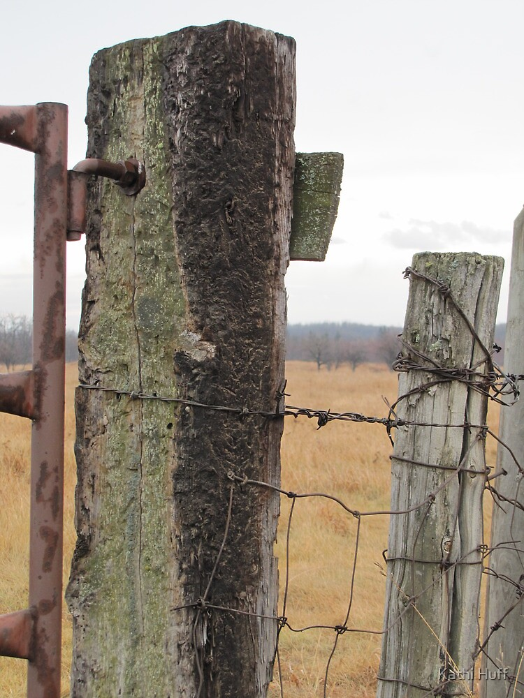 Soggy Fence by Kathi Huff