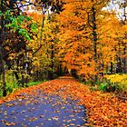 A Perfect Fall Afternoon by Brian Gaynor