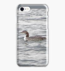 A Loon of Wisconsin iPhone Case/Skin