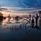 Menindee, the Transition by Malcolm Katon
