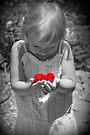 Holding My Heart by Amy Dee