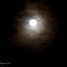 Full Moon (5093c) by Raymond Kerr