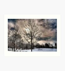 Lonely cold tree Art Print