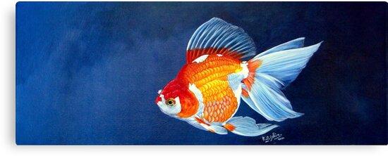 Ryukin Goldfish | Ryukin Goldfish Canvas Prints By Robert David Gellion Redbubble