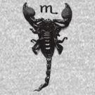 Scorpio Rising by shhevaun