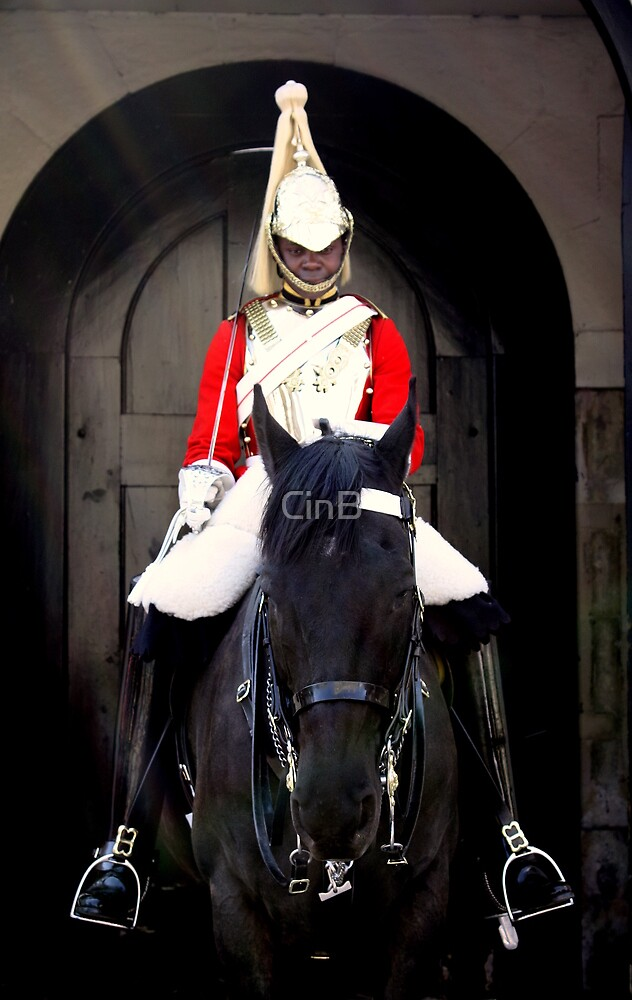 One Of The Queen's Horses & One Of Her Men...... by CinB