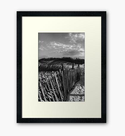 Dune Fence at Sandy Hook Framed Print