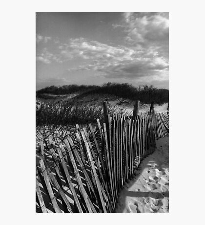 Dune Fence at Sandy Hook Photographic Print