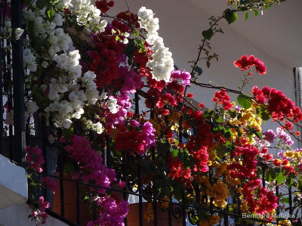Balcony In Puerto Vallarta - Balcón En Puerto Vallarta by Bernhard Matejka