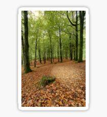 Portglenone Forest Sticker