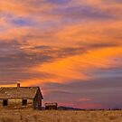 Little House On The Colorado Prairie 2 by Bo Insogna