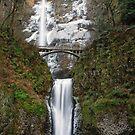 Multnomah Falls in January by Jennifer Hulbert-Hortman