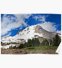 Summer on Mt. Hood Poster