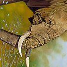 Elephant Days von Graeme  Stevenson