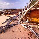 Platypus Bay, Teerk Roo Ra National Park by Robert Ashdown