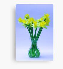 Daffodil Vase Canvas Print