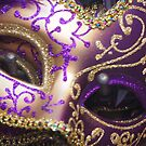 Masquerade, Ready for the Ball by Ron Fitzgerald