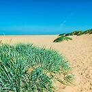 Life's A Beach by John Hare