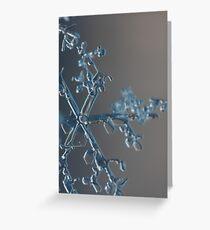 Towering snow crystal Greeting Card