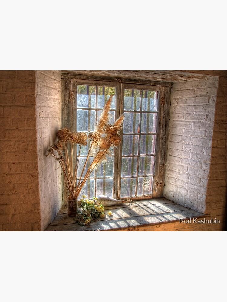 Old Goulburn Brewery Window by RodKashubin