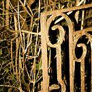 Gate by GlitterKiss