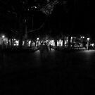 Washington Square Park by briceNYC
