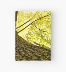 tree the roots view Hardcover Journal