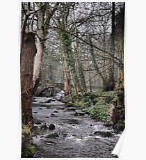Rivelin river Poster